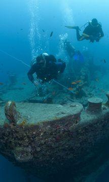 Tauchen in sharm el sheikh rotes meer reef oasis dive club - Reef oasis dive club ...
