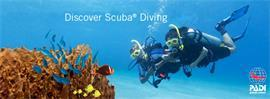 Book now online the Discover Scuba Diving course for only 81 USD