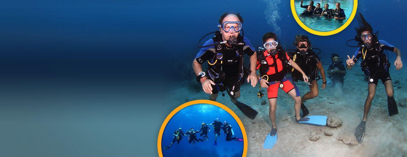 Diving in grand bahama freeport reef oasis viva bahamas - Reef oasis dive club ...