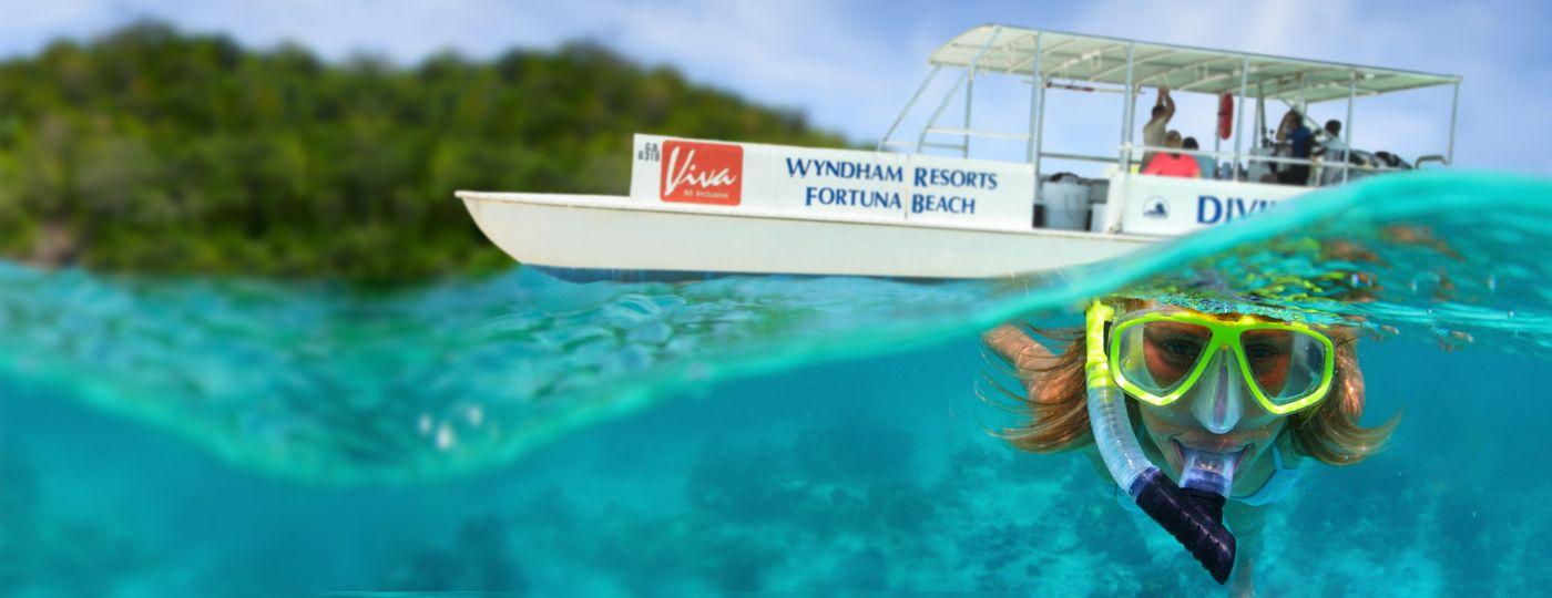 Plong e grand bahama freeport reef oasis viva bahamas - Reef oasis dive club ...