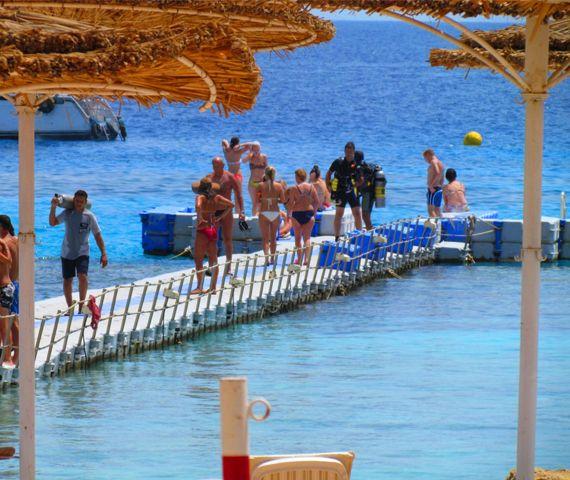 Dive center sharm el shiekh padi 5 star idc reef oasis - Reef oasis dive club ...