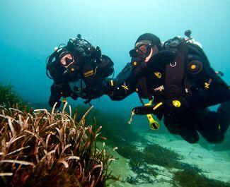 Padi rebreather qualifier in sharm el sheikh - Reef oasis dive club ...