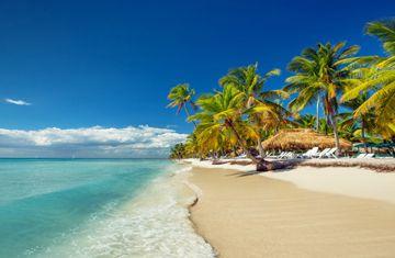 Duiken in dominicaanse republiek bayahibe reef oasis - Reef oasis dive club ...