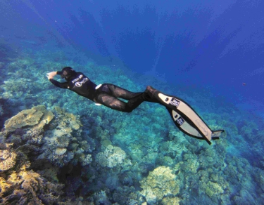PADI Basic Freediver