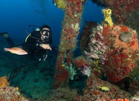 Galerie de photos de plong e r publique dominicaine - Reef oasis dive club ...