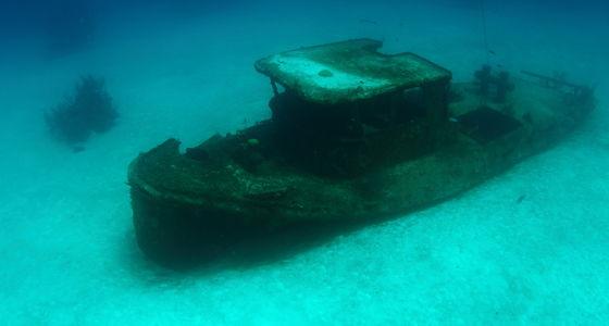 Tauchpl tze von grand bahama freeport karte beschreibung - Reef oasis dive club ...