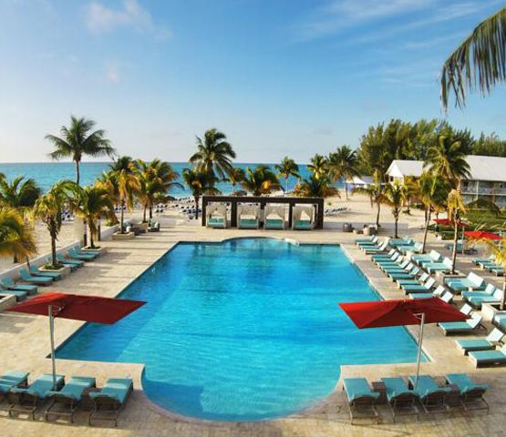 Dive and hotel package in grand bahama - Reef oasis dive club ...