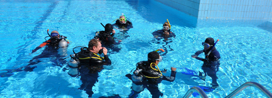 Learn Diving with 7 Nights All Inclusive Accommodation's photo