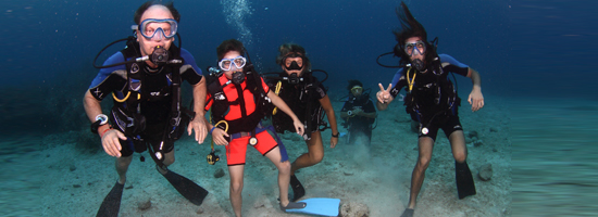 PADI Corso Open Water Diver + Hotel's photo